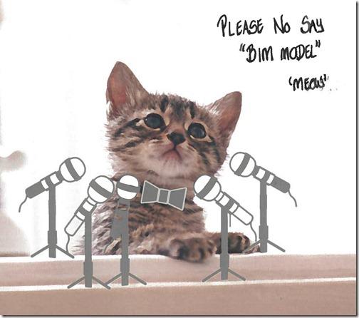 kitten-podium2