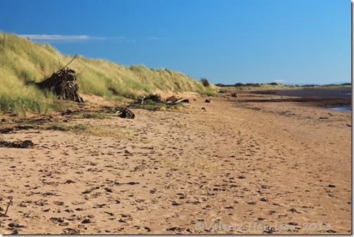 23-mersehead-beach