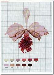 flor-ponto-cruz-grafico-orquidea