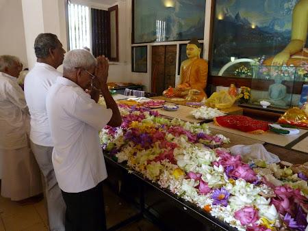 Budism in Sri Lanka: flori ca ofranda