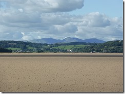 Morecambe Bay Walk (37)