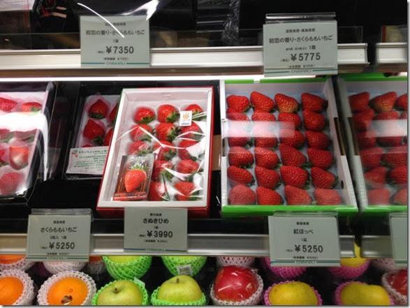 japanese-food-pron-025