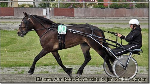 2012-alm-rau-jo_01