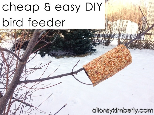 Cheap &amp; Easy DIY Bird Feeder