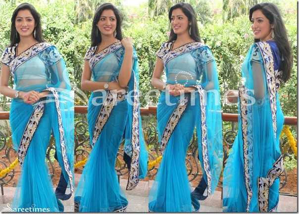 Richa_Panai_Blue_Net_Saree