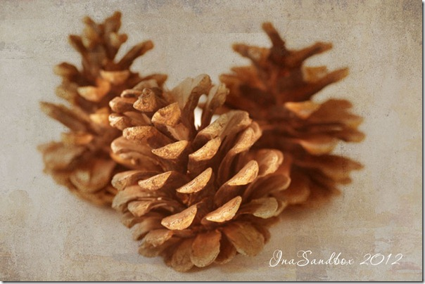 pinecones with kk texture abstract
