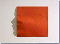 Origami Shadows