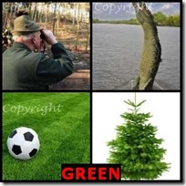 GREEN- 4 Pics 1 Word Answers 3 Letters