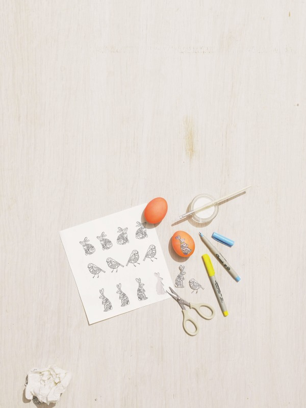 Mhow-to-illustrated-egg -654-d111784