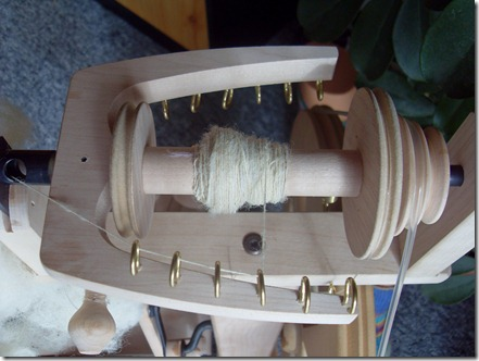 2011_08 Mein Kiwi kommt an (8)