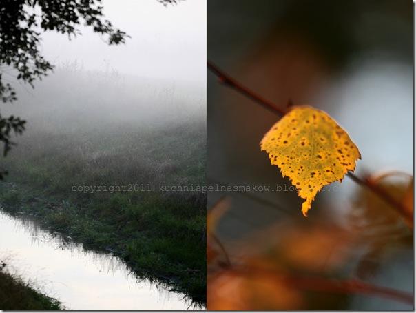 A jesień przyszła po cichu7
