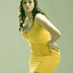 Namitha Hot (37).jpg