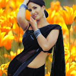 Sexy-Katrina-Kaif-Photos-3.jpg
