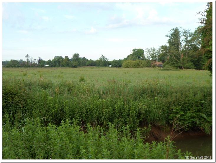 SAM_0996 Site of Battle of Cropredy Br