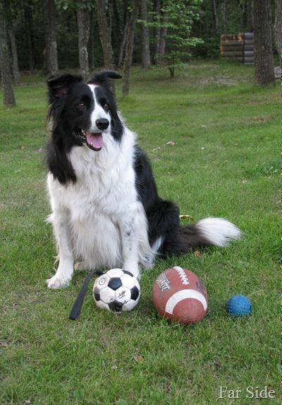 Play some ball