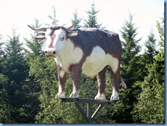 8412 Manitoba Oak Lake just off Trans-Canada Highway 1 - Isaac the Ox