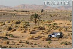 Rally Marokko 2012 14