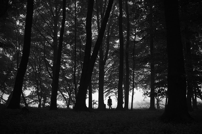 Leaving the darkness of the forest, near Ith in norther Germany.