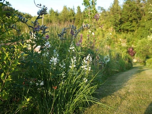 2012-06-27 Hagen på Møll (74)
