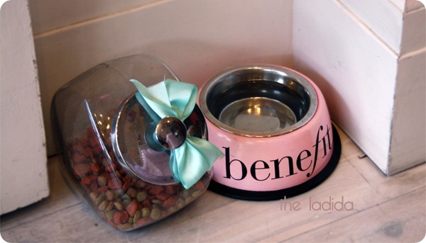Benefit Boutique Pet Friendly