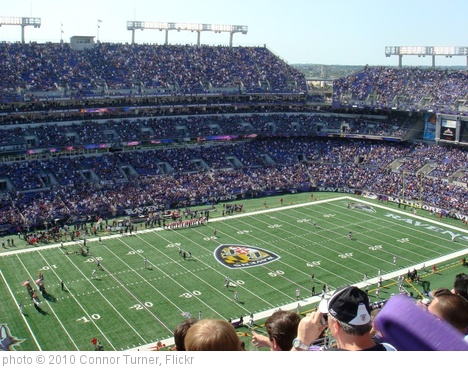 'The Ravens Faithful' photo (c) 2010, Connor Turner - license: http://creativecommons.org/licenses/by-sa/2.0/