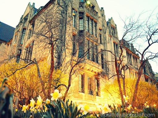 Eckhart Hall at dusk, University of Chicago