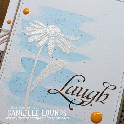C4C280_Daisies_B_DanielleLounds