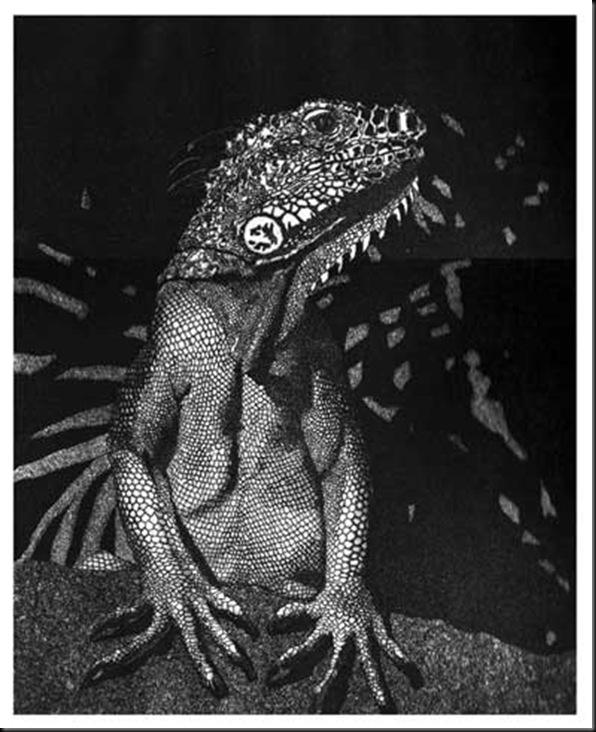 Vita IV - Iguana , 1999