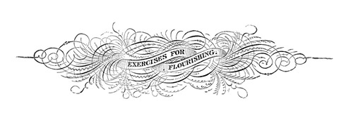 exercsies for flourishing