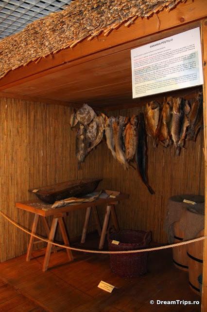 Muzeul Delta Dunării Tulcea 6838.JPG