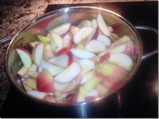 apple sauce 6