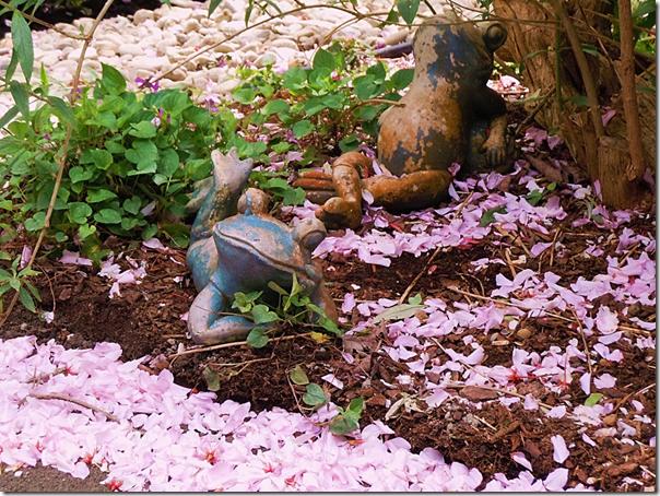 GardenFrogs