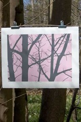 paul-farrell-limited-edition-tree-series-2096-p
