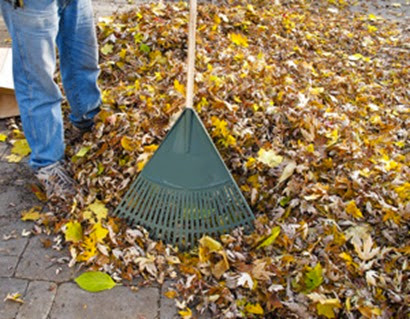 leaves_mulch