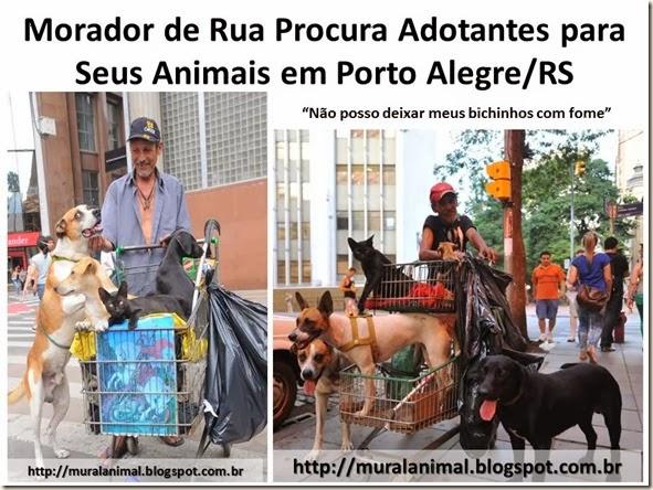 Morador de Rua Procura Adotantes para Seus Animais