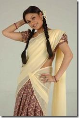 Sonia Agarwal in Half Saree