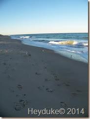 vero beach 009