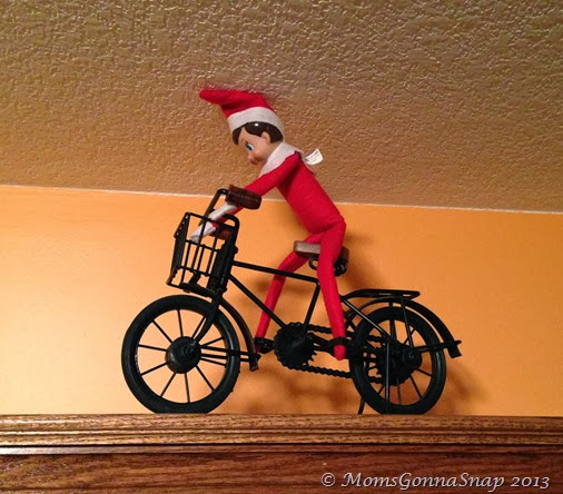 Elf on the Shelf by MomsGonnaSnap (10)