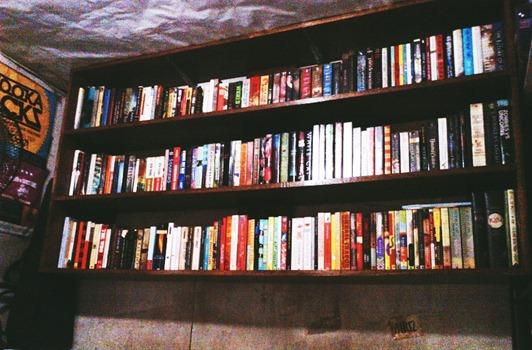 bookshelf01 - Copy
