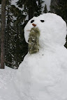 ~~~~~~~~~~~~~~~~ THINK SNOW! ~~~~~~~~~~~~~~~
