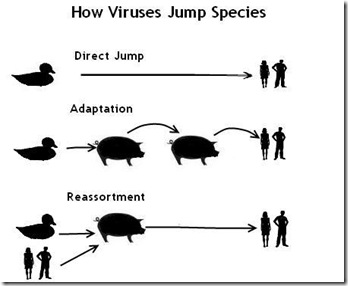 Zoonotic Jump