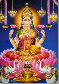 Lakshmi Devi amidst lotus flowers