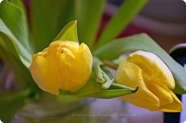 springcomesoon (2)