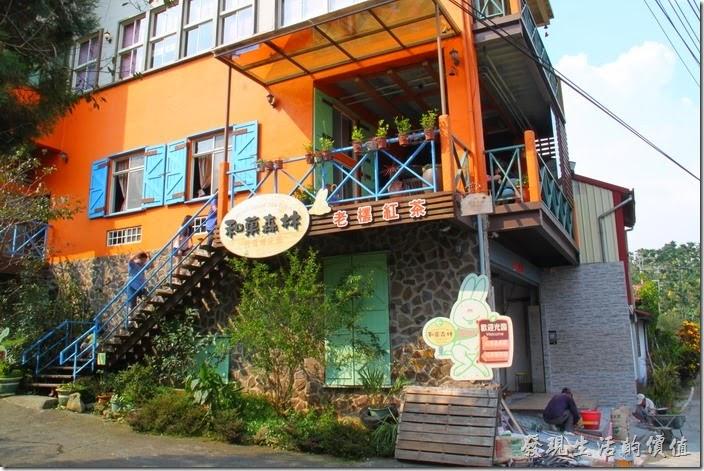 台中日月潭-和菓森林揉茶。這棟橘色的建築物就是這次要DIY揉茶的【和菓森林】了,這裡強調他們家有老欉的紅茶樹,就下柚子也是要老欉的才好吃。