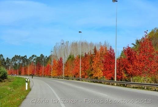 Glória Ishizaka - Folhas de Outono 9