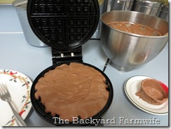 chocolate waffle - The Backyard Farmwife