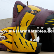 Dripping Springs High School Inflatable.JPG