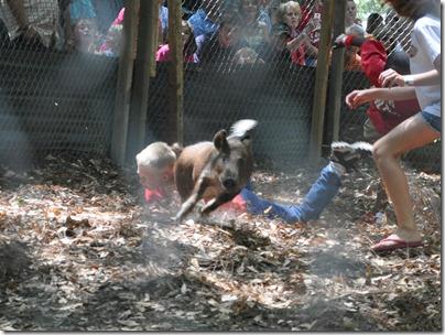 wild hog festival (44)