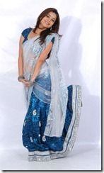 Nisha Agarwal Latest Hot Navel Show Stills in Saree, Nisha Agarwal Hot Saree Photos