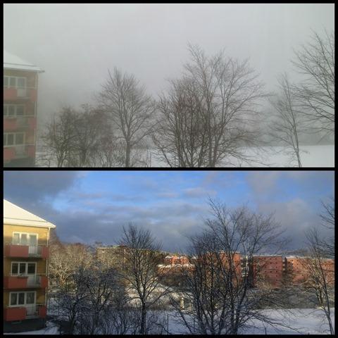 2013-02 fog